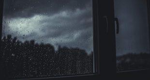 langu montavimas ir sandarinimas, mikroklimato problemos